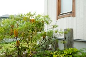 筑紫野市 個人邸